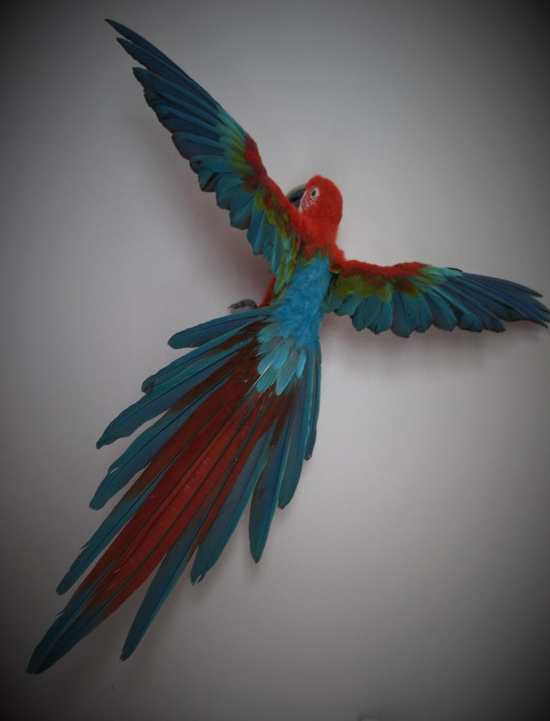 needle felted life sized greenwing macaw by featheredfauna on