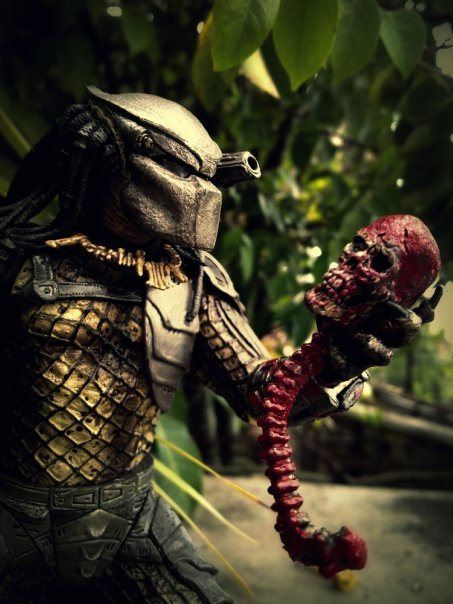 predator_with_skull_by_tomzj1-d387d6e.jp