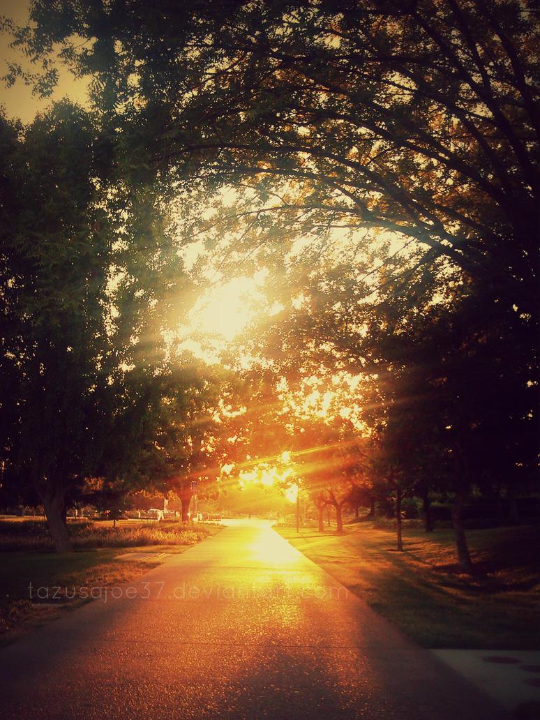 Hope Begins by tazusajoe37