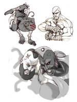 Street Fighter Character Sheet by KAIRU-2RI