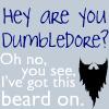 Beards by LuminousLuck