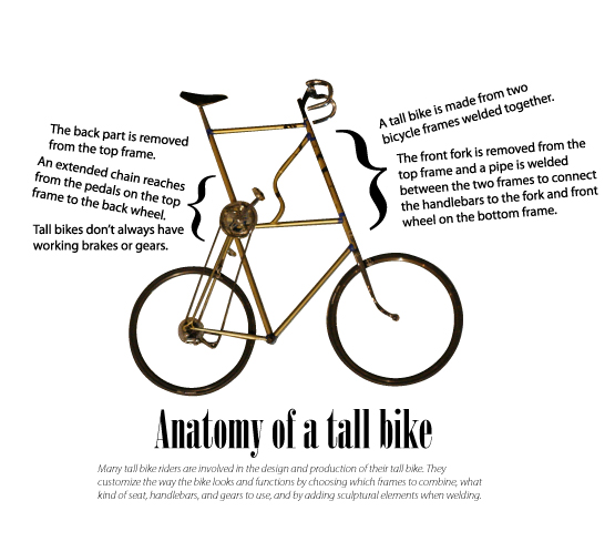 Anatomy Of A Tall Bike By Papilia On Deviantart
