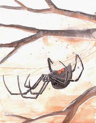 Drawlloween 30: Spider