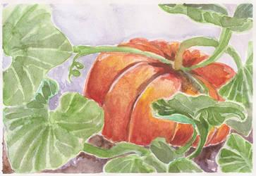 September Pumpkin