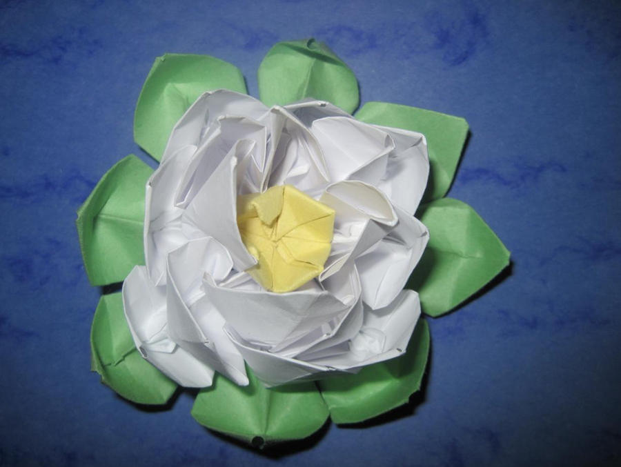 Origami water lily 1 by Wintella on DeviantArt - photo#22