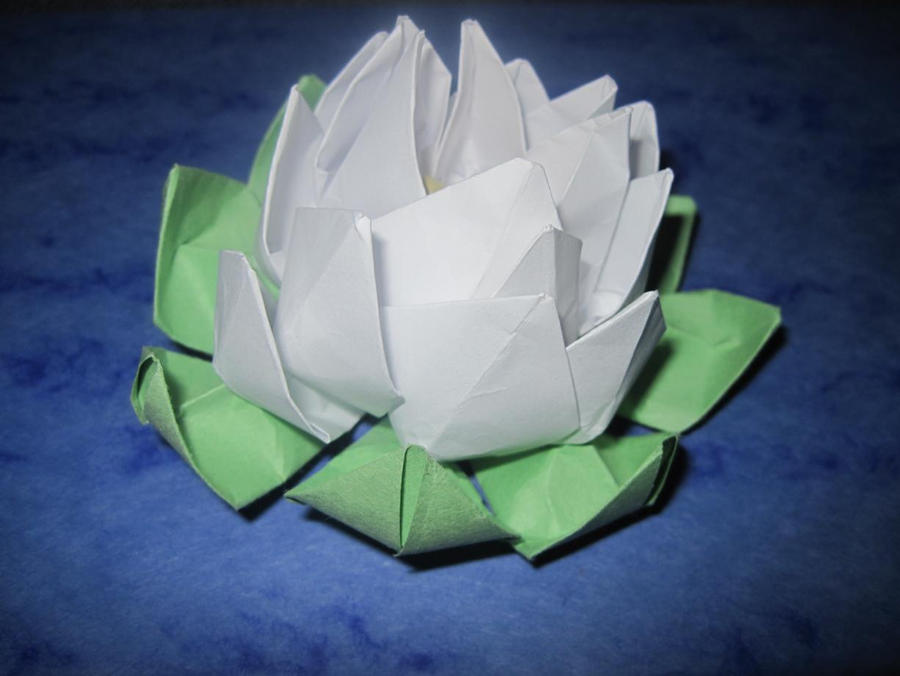 Origami water lily 2 by Wintella on DeviantArt - photo#9