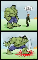 Don't Mess With Ruffalo Hulk