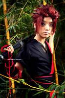 PeaceMaker: Tetsunosuke by Akusesu