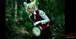 The White Rabbit by Akusesu