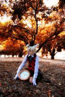 My Wonderland by Akusesu