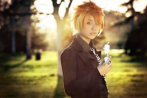 Fairy Tail: Leo by Akusesu