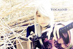 Vocaloid: Demon Sword
