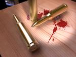 50 cal bullets