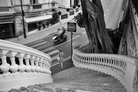 Monte Carlo Steps