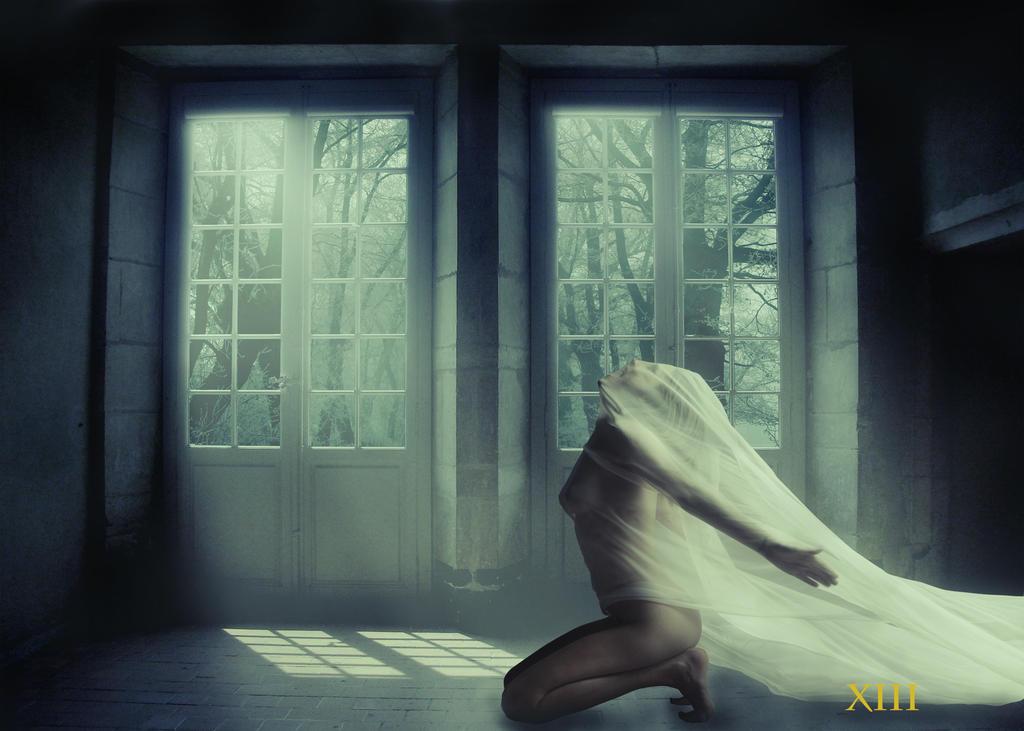 Moonlight escape by 13Jeffrey13