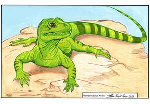 Homoeosaurus 8.5 X 11 sketch (AVAILABLE)