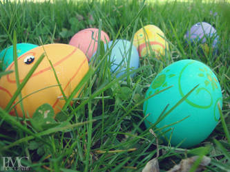 Painted Eggs by momoclone