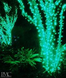IllumiNights by momoclone