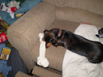 Belle and Big Bone