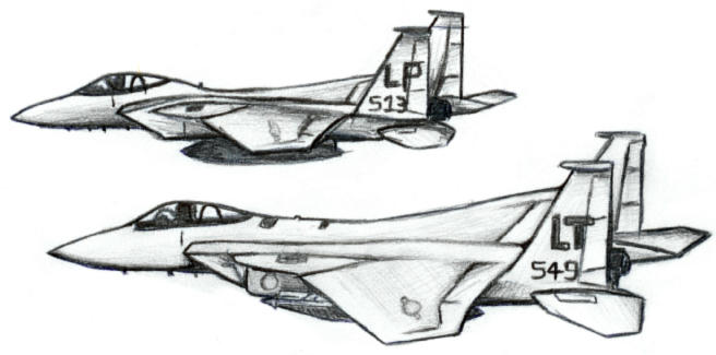 two F15's by mkonji