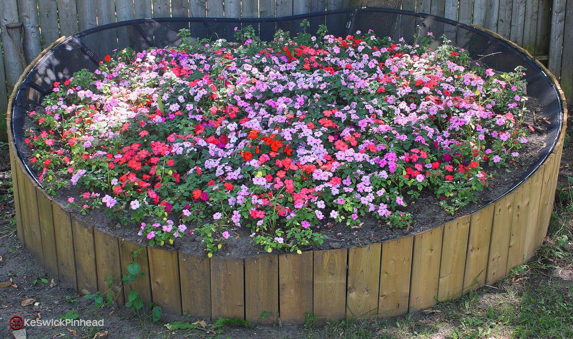 satellite dish garden by keswickpinhead on deviantart