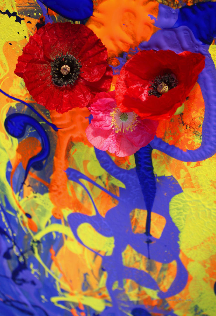 Poppies Flergleblurg by KeswickPinhead