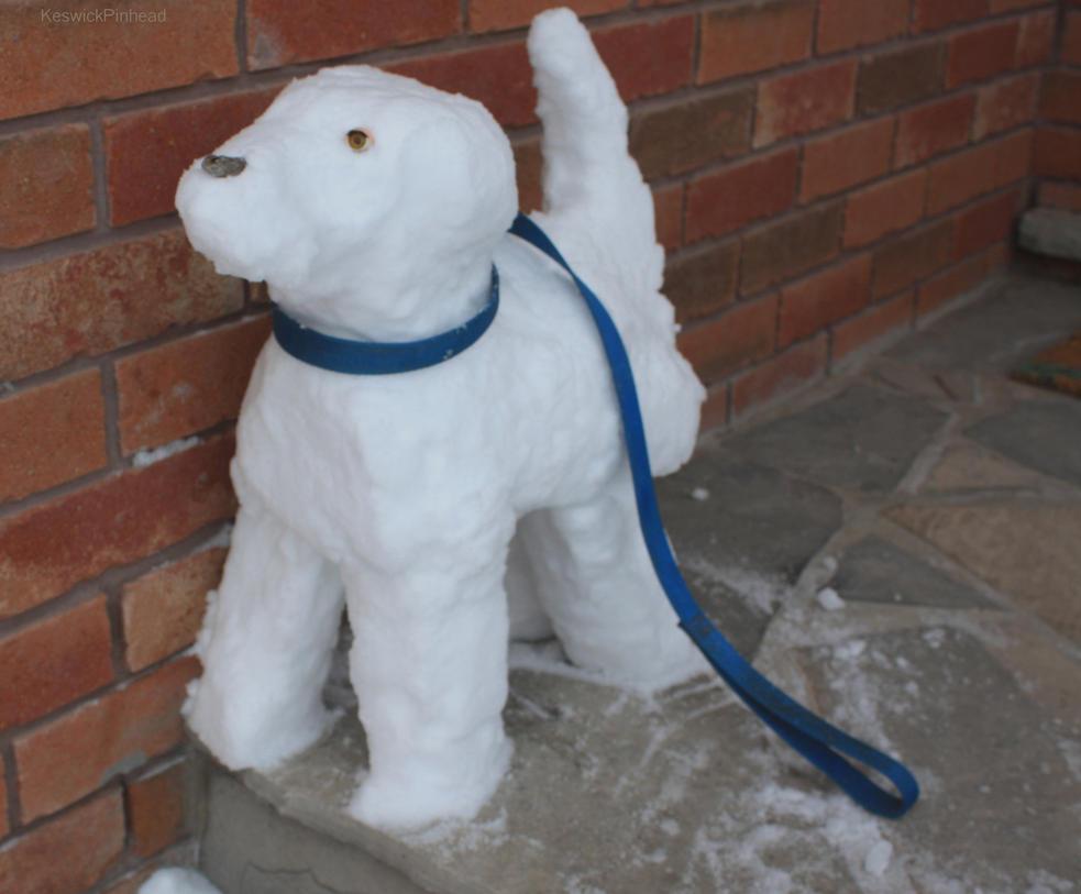 Snowdog wants to go for a walk by KeswickPinhead