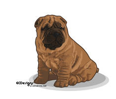 The Shar-Pei by Padme789