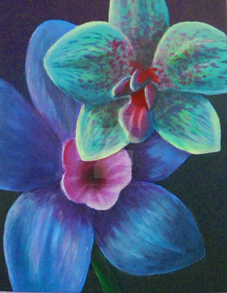 Orchids by StarfallenWolf