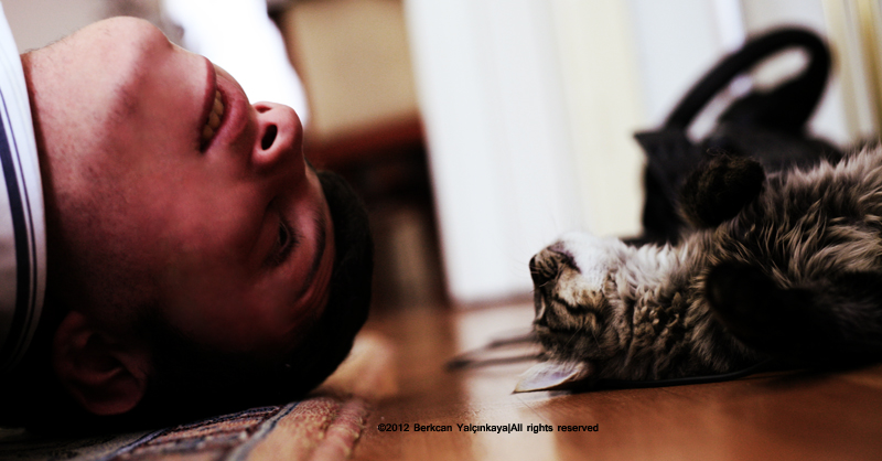 Hey Look At Me by VoldroY
