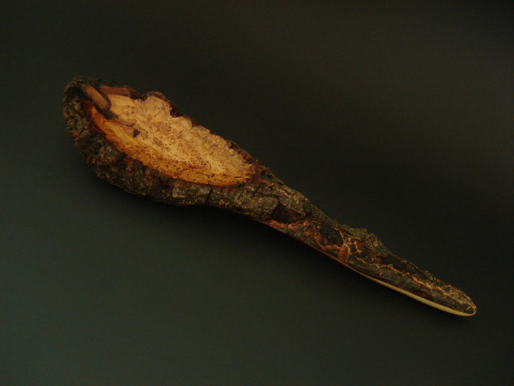 Cherry burl with bark by Sp00ntaneous