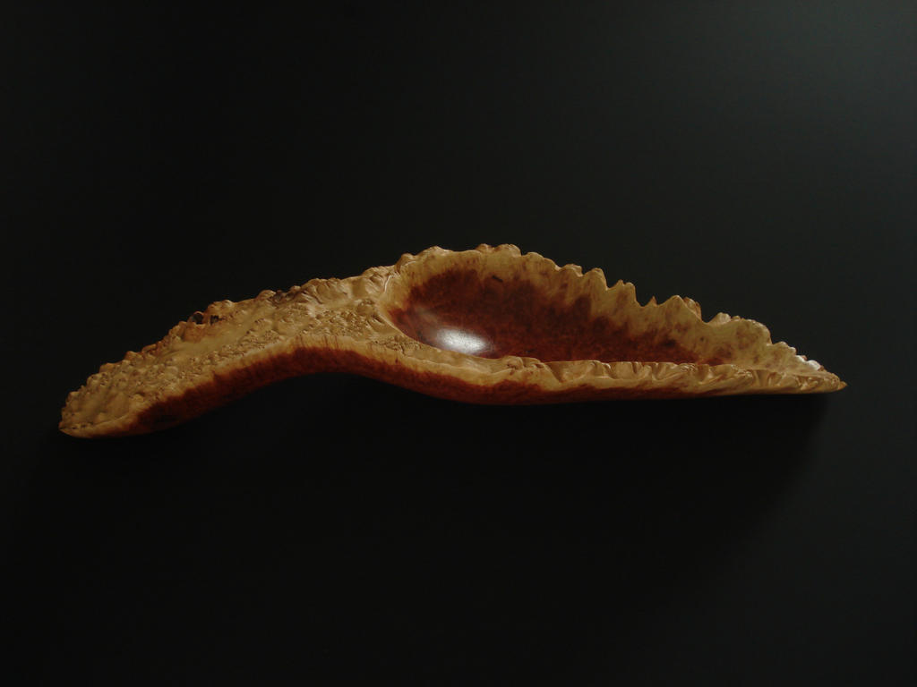 Horistes Burl wooden spoon by Sp00ntaneous