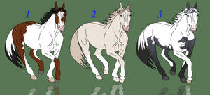 Draw to adopts
