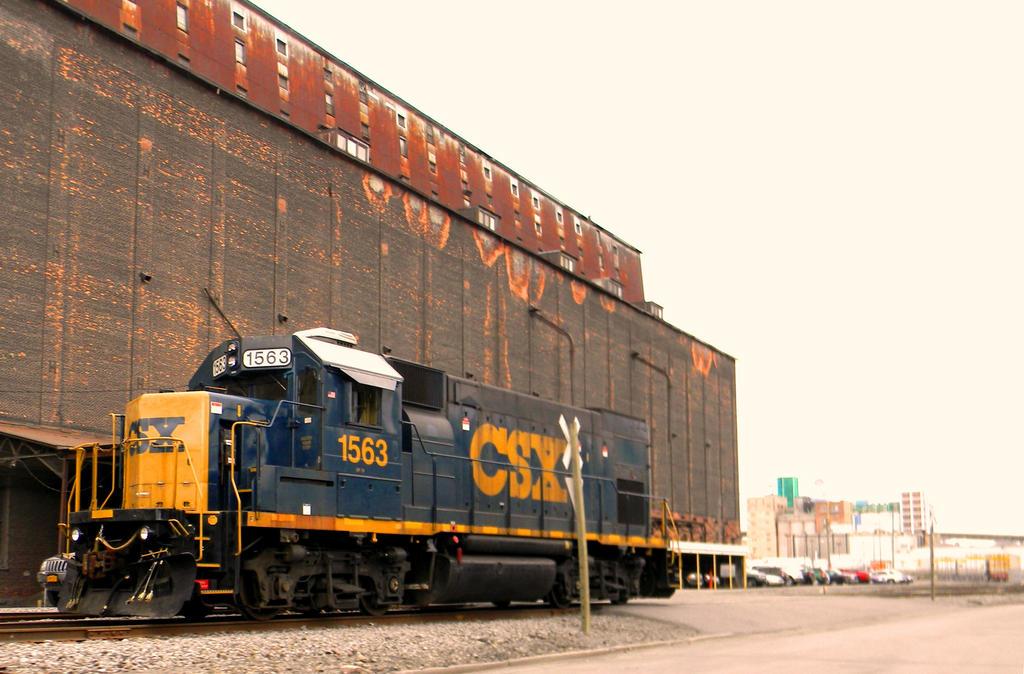 Buffalo Train by Steppenwulfe
