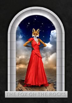 The fox on the rocks