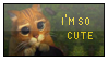 I'm so cute by renatalmar