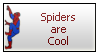 Spiders Are Cool by renatalmar