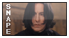 Snape by renatalmar