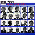 Political Album Cover - You cant stump the Trump by DaManOfManyNames