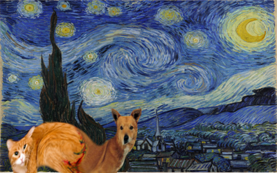Cat-Dog in a Vangogh by DaManOfManyNames