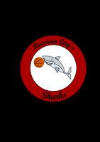Raccoon City Sharks by DaManOfManyNames