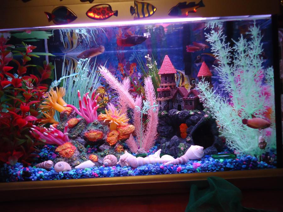 Female betta sorority upgrade by ultrarodimus for 10 gallon fish tank decoration ideas