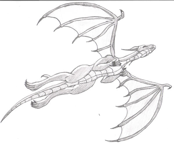 Dragon Line Drawing Easy : Flying dragon by stallivo on deviantart