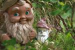 Garden Gnomes  Play Tricks