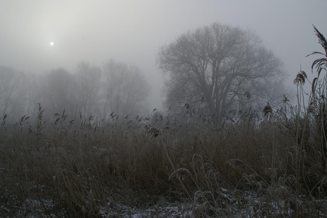 Winter landscape 3 by Gerfer