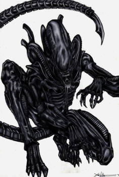 Xenomorph Coloured