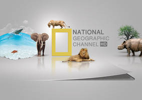 National Geographic by batchdenon