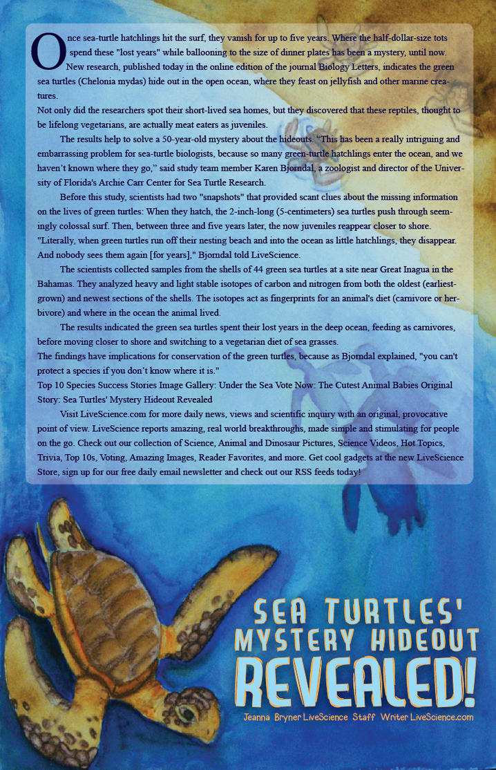 Sea Turtle Mystery by EmersonWolfe
