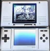 Nintendo DS PICTOCHAT