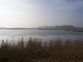 big pond 2
